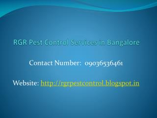 Best Pest Control Services in Bangalore - 09036536461