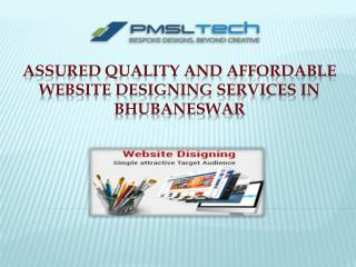 Assured Quality Website Designing Services in Bhubaneswar