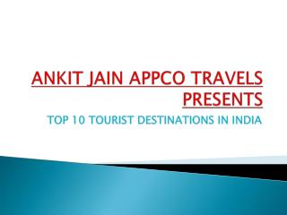 ANKIT JAIN APPCO TRAVELS