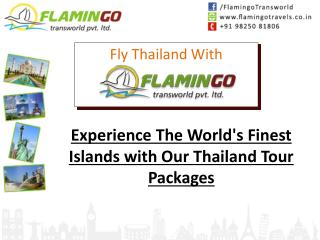 Experience The World's Finest Islands with Our Thailand Tour