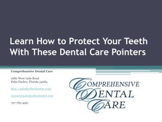 Palm Harbor Dentists