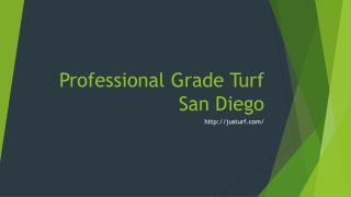 Professional Grade Turf San Diego