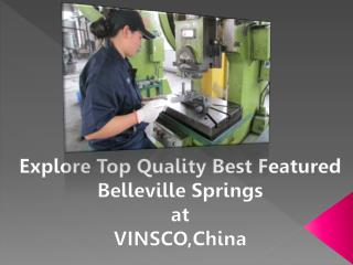 Explore Top Quality Best Featured Belleville Springs