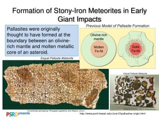Formation of Stony-Iron Meteorites in Early Giant Impacts