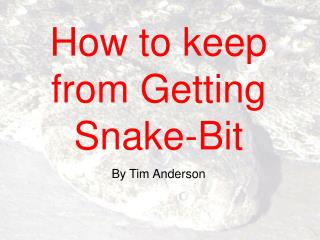 How to keep from Getting Snake-Bit By Tim Anderson