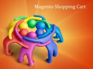 Magento Shopping Cart Development - Magento Experts