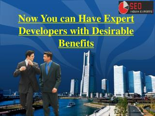Now You can Have Expert Developers with Desirable Benefits