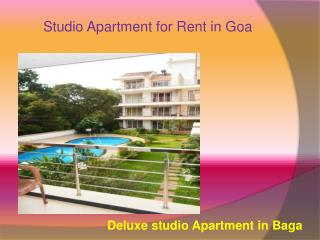 Studio Apartment rent for tourist in Arambol Beach, Goa