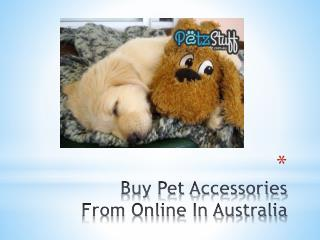 Buy Pet Accessories From Online In Australia