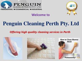 Penguin Cleaning Perth Pty Ltd