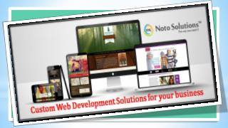 Custom web development Solutions for your business via NOTO