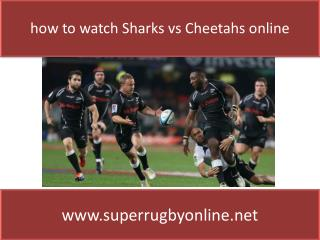 watch Sharks vs Cheetahs live