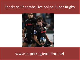 Watch Sharks vs Cheetahs - live Super Rugby streaming