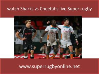 Preview & Streaming Sharks vs Cheetahs Live online