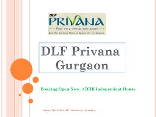 DLF Privana Gurgaon – Booking Open Now, 3 BHK Independent Ho