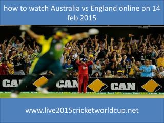 where watch Cricket Worldcup india vs pakistan 15 feb 2015