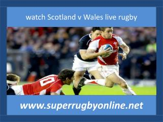 watch Scotland v Wales live rugby