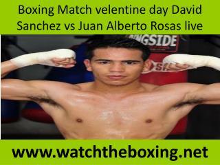 watch David Sanchez vs Juan Alberto Rosas live fight online