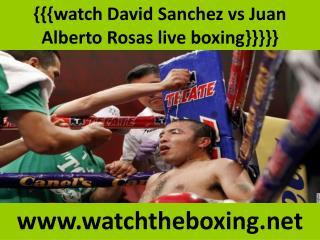 watch Sanchez vs Rosas live boxing fight
