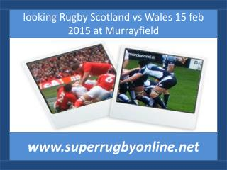 watch Scotland vs Wales online live rugby sports
