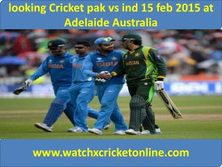 looking Cricket pak vs ind 15 feb 2015 at Adelaide Australia