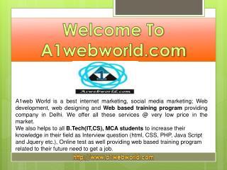 Best Internet Marketing service provider-A1web world