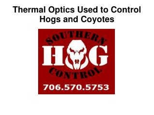 Thermal Optics Used To Control Hogs and Coyotes