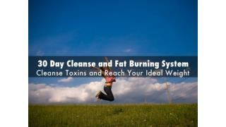 30 Day Cleanse and Fat Burning System
