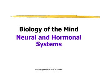 Biology of the Mind Neural and Hormonal Systems Worth/Palgrave/Macmillan Publishers
