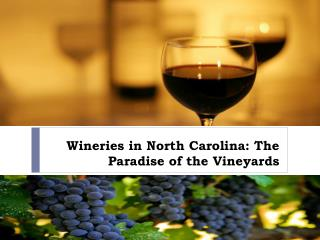 Wineries in North Carolina The Paradise of the Vineyards