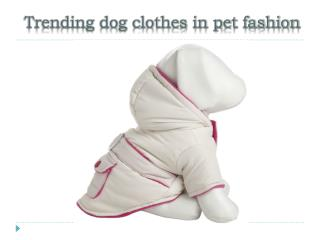 Trending dog clothes in pet fashion