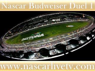See Nascar Online