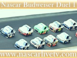See Nascar Budweiser Duel 1 Race Live Streaming