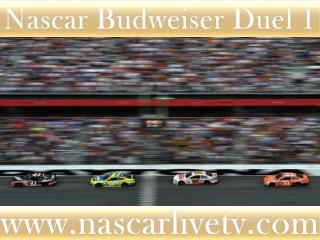 See Nascar Budweiser Duel 1 Race Live Telecast