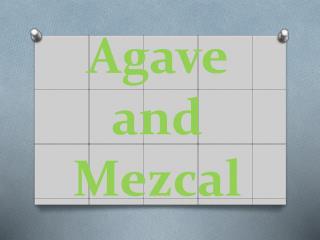 Agave and Mezcal
