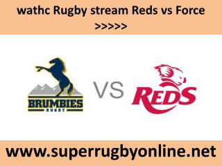watch Reds vs Force live Rugby match online feb 21