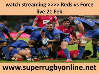 watch Reds vs Force live Rugby in Brisbane 21 Feb 2015