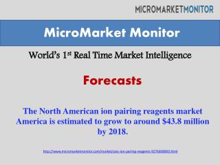 The North American ion pairing reagents market.