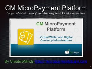 Introduction to the CM MicroPayment Plugin for WordPress