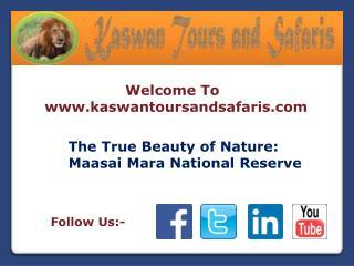 Beauty of Nature Maasai Mara National Reserve
