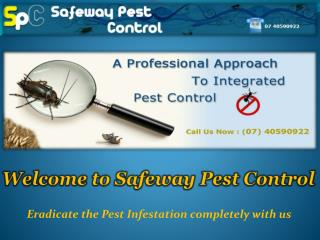Commercial Pest Control in Cairns - Safeway Pest Control
