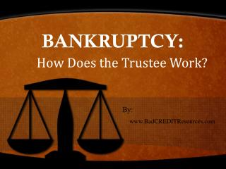 Bankruptcy: How Does the Trustee Work?