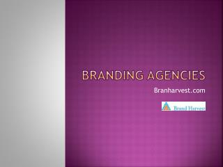 Brand Solutions Company