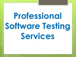 Professional Software Testing Services