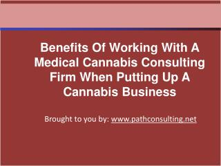 Benefits Of Working With A Medical Cannabis Consulting Firm