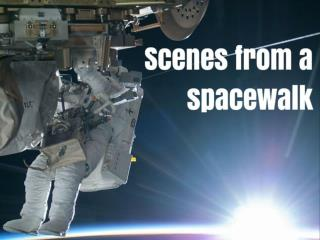 Scenes from a spacewalk
