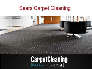 Try Our Coit Carpet Cleaning Services