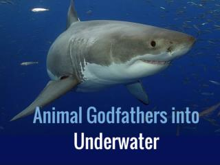 Animal Godfathers into Underwater