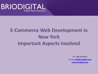 E-Commerce Web Development in New York Important Aspects