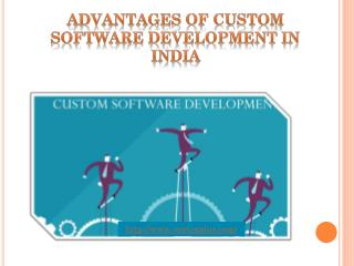 Advantages Of Custom Software Development In India